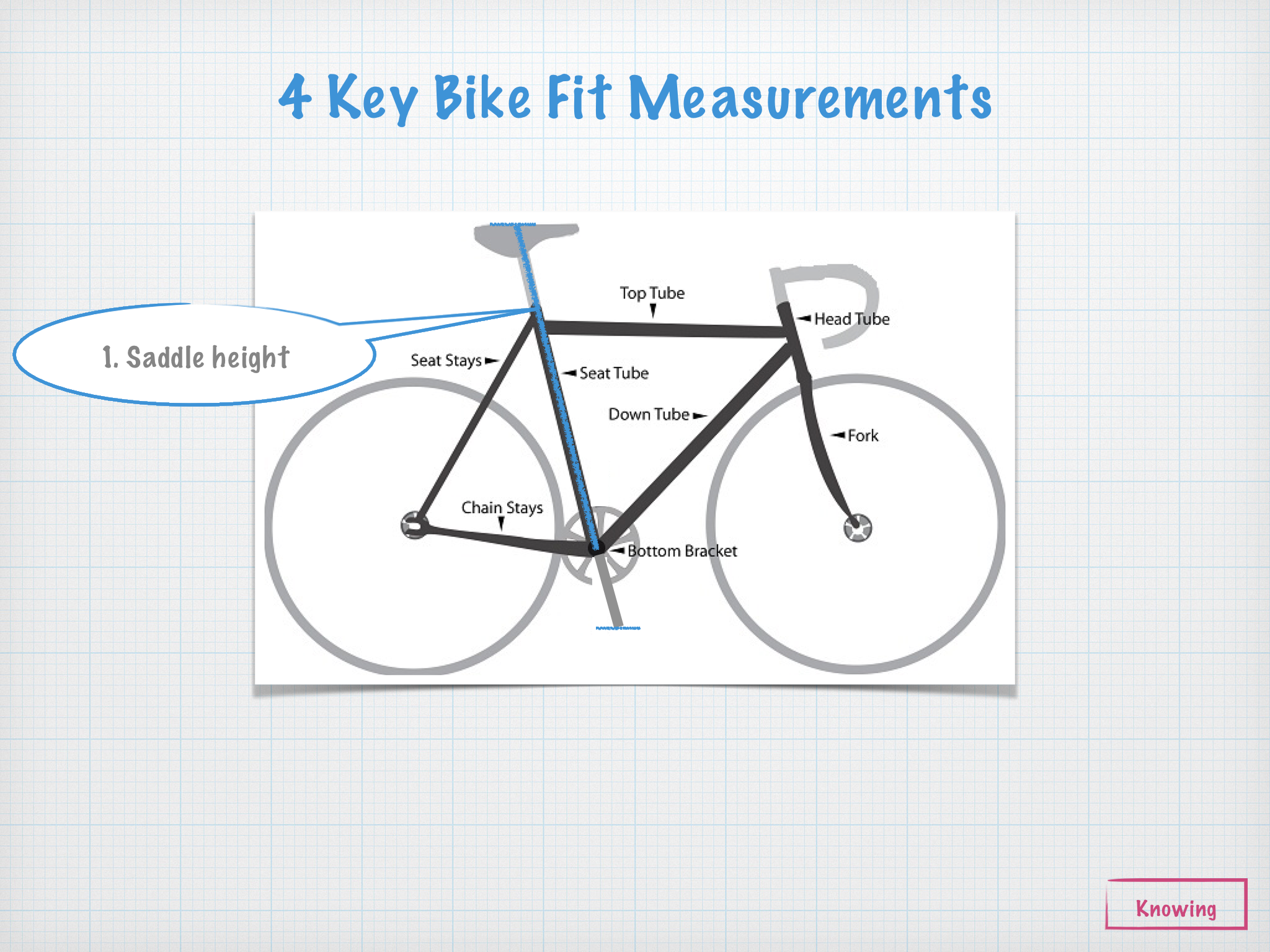img_4420 0 bike fit basics when to get a fit posture movement pain